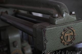 _DSF6078.JPG