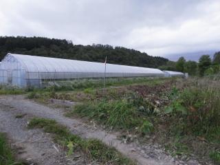 0924suiro_4.jpg
