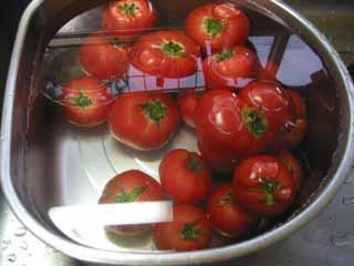 shizumu_tomato.jpg