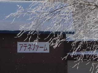 0212jyuho_s.jpg
