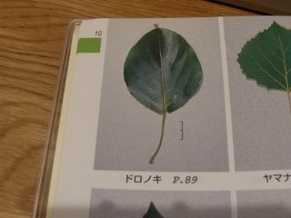1108zukan_2.jpg